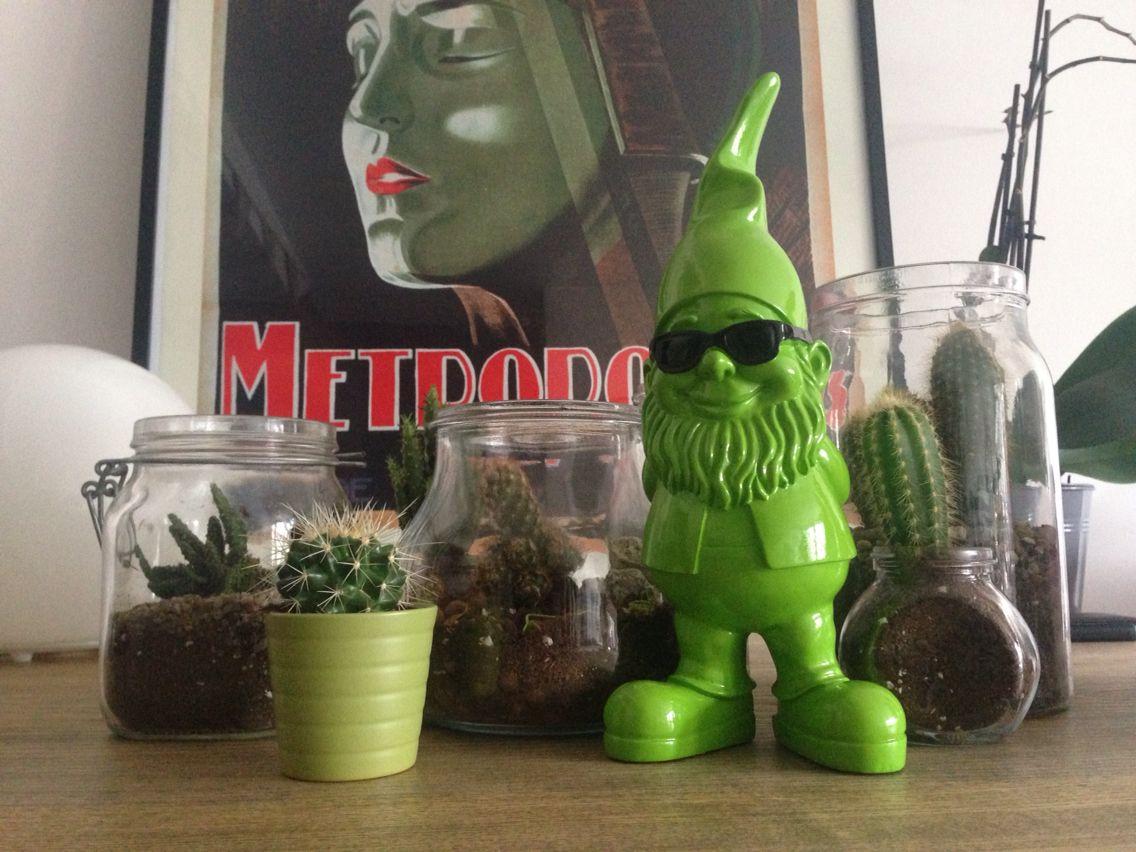 #Terrarium#nain#cactus#deco#metropolis