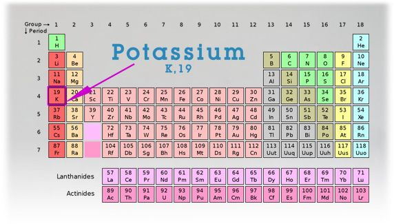 periodic table of elements including fill in the blank element worksheets - Periodic Table Name Of Group 1