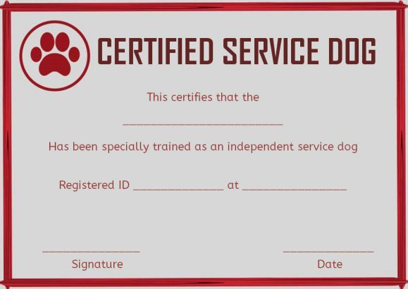 service dog training certificates template | service dog certificate