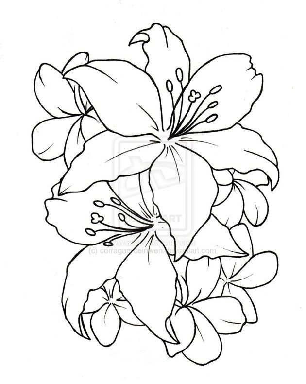 404 Not Found Drawings Flower Drawing Simple Flower Tattoo