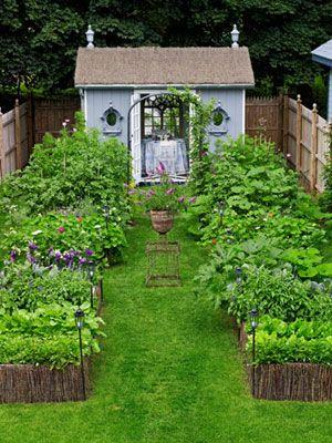 The Instant Garden