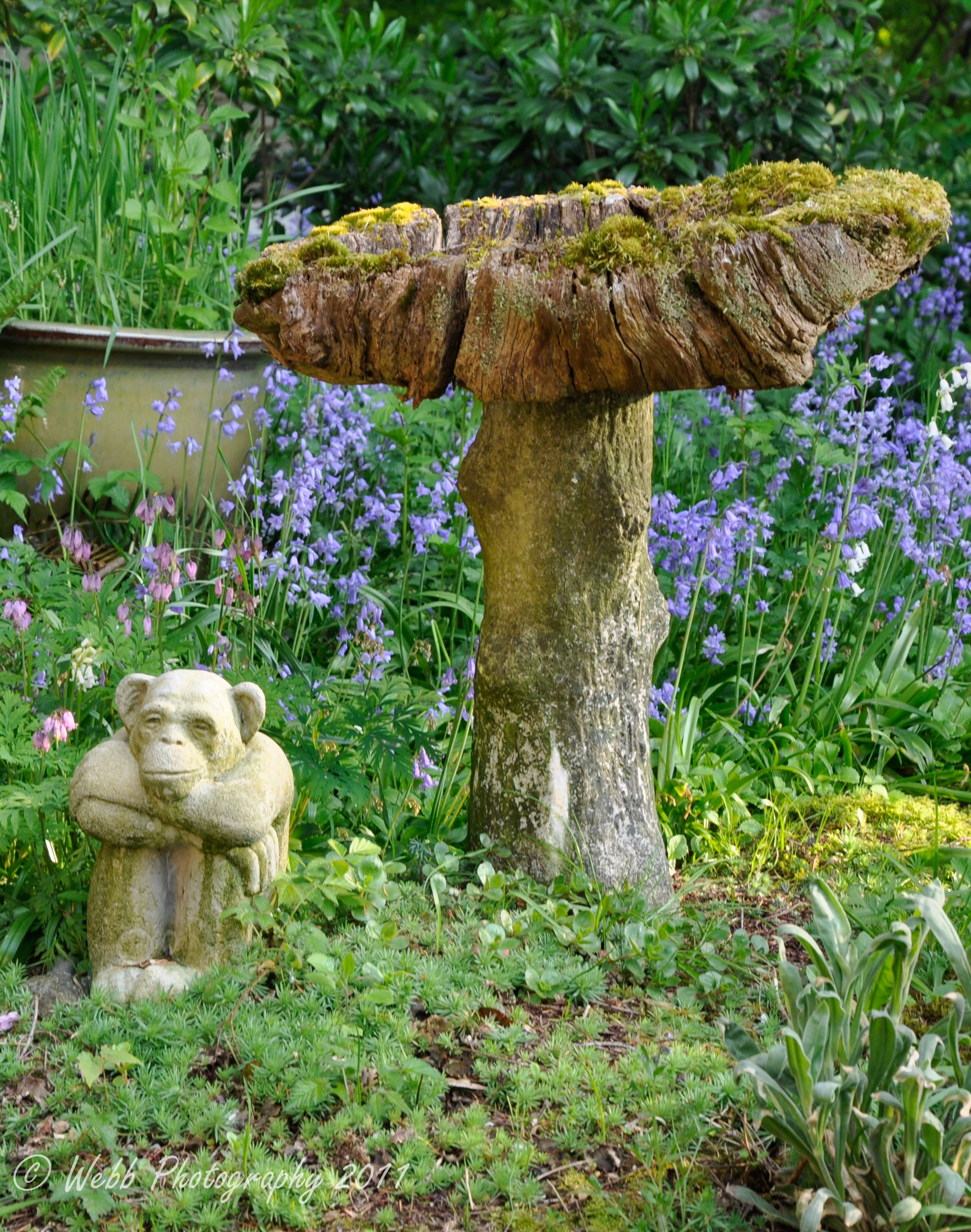 Monkey Statue And An Old Wooden Bird Bath Monkey Statue