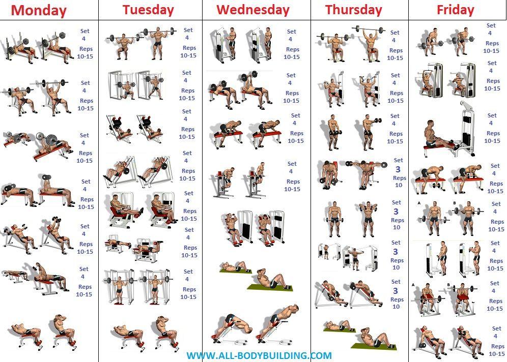 Beginner   bodybuilding program also exercise workout rh pinterest