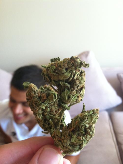#marijuana #sacramento