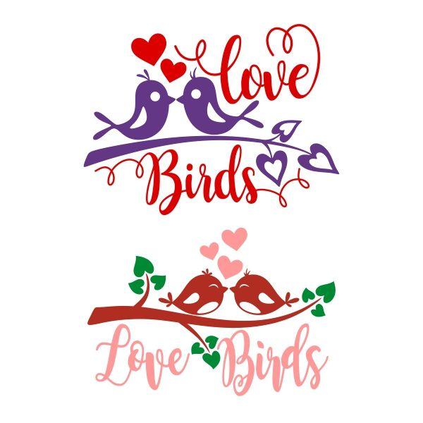Download Loving Bird SVG Cuttable Design   Love birds, Birds ...