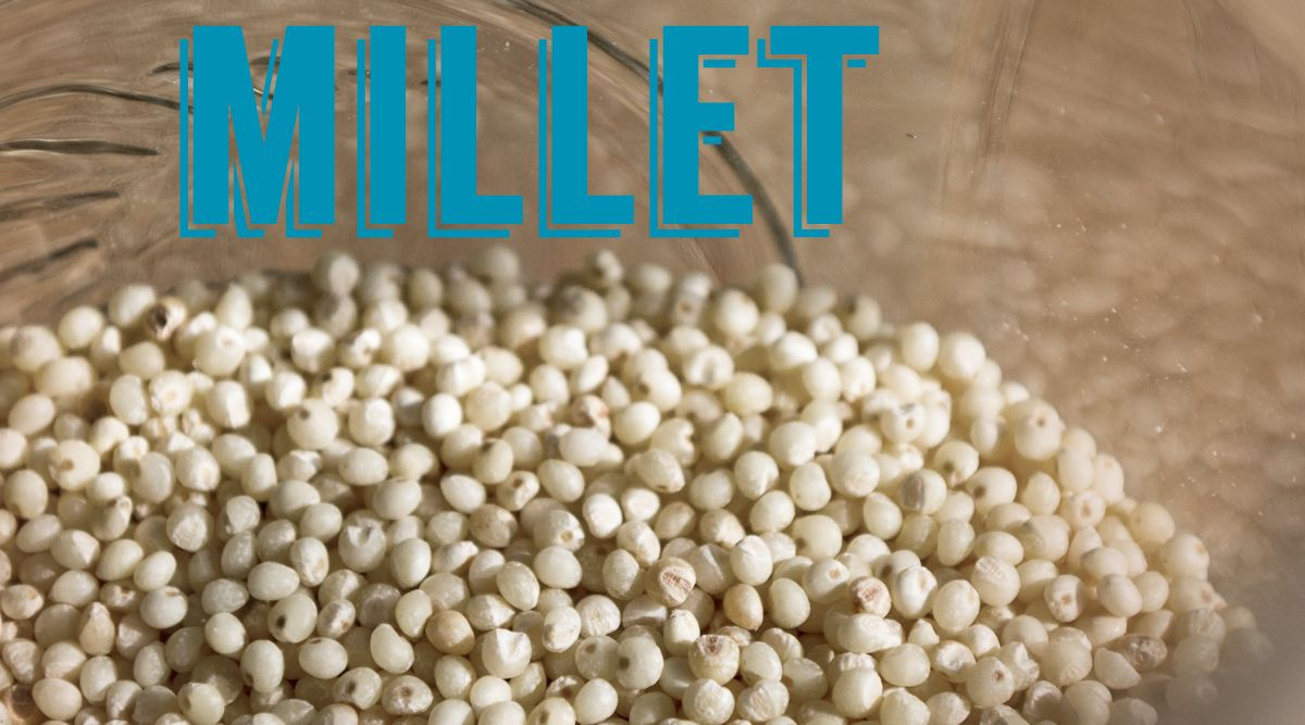 How to cook millet recipe how to cook millet cooking