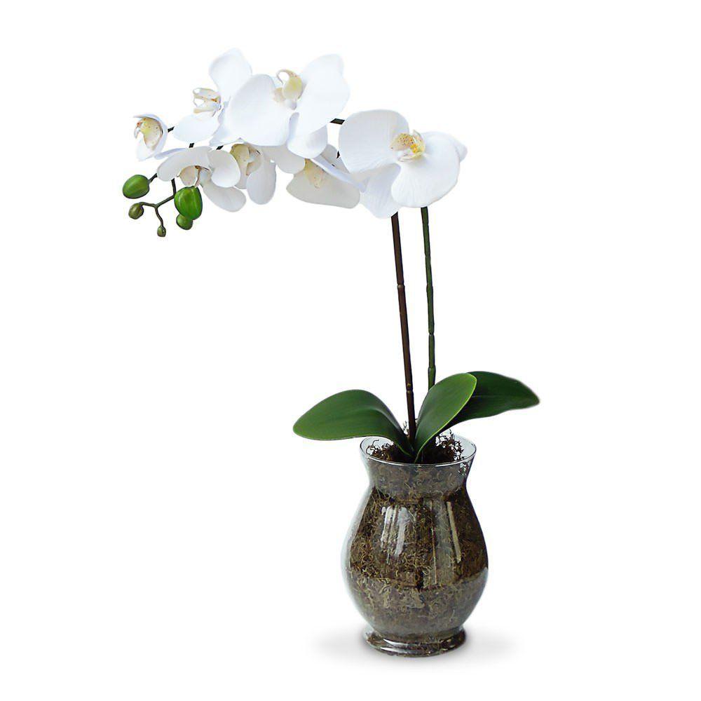 Arranjo de Flores Artificiais Orquideas no vaso de vidro 55cm - Felicitadecor