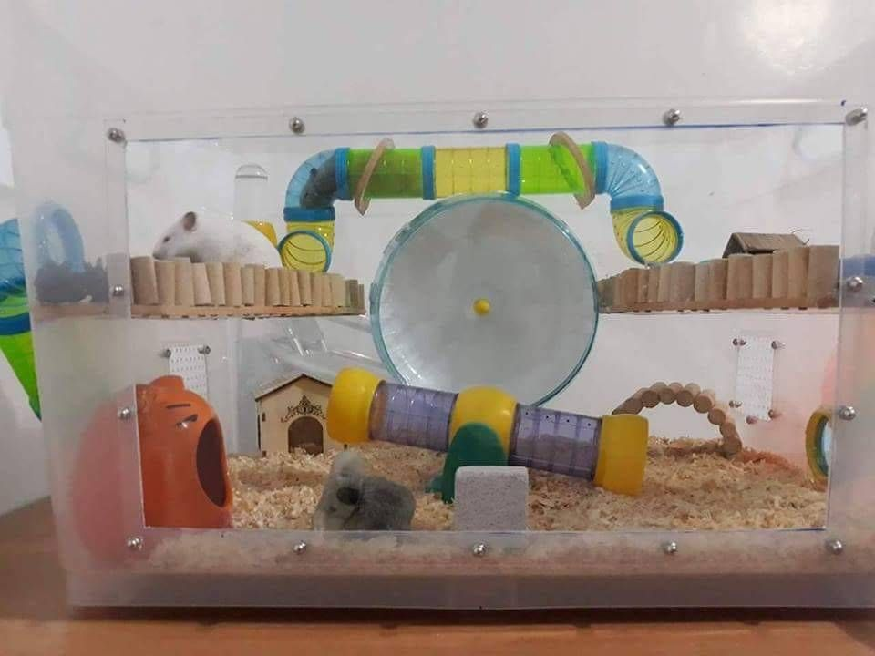 Hamster Bin Cages By Philippine Hamster Keepers Hamster Bin Cage
