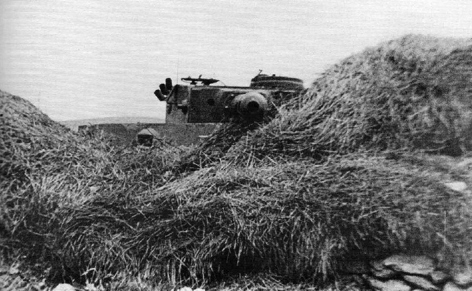 ebat' ti loh... - reichsmarschall: Panzerkampfwagen VI Tiger...