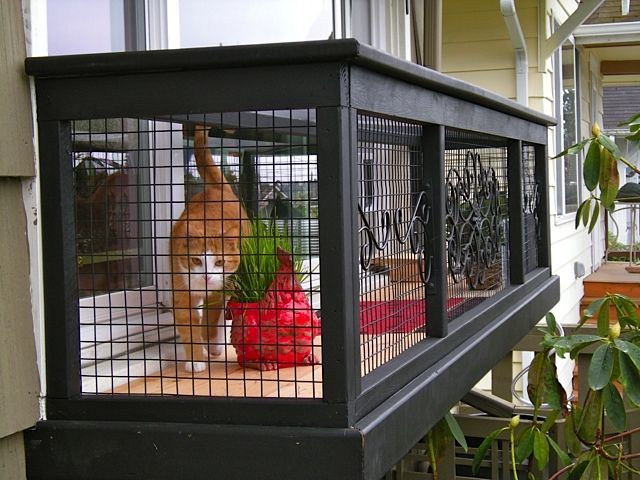 A catio is the coolest thing you never knew your cat for Rv with balcony