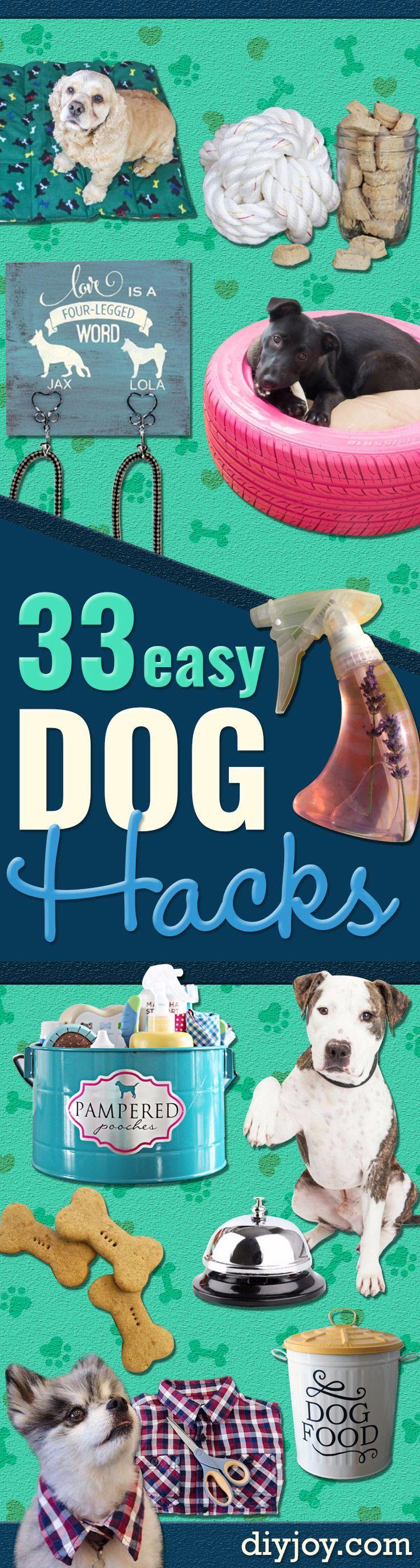 Diy dog hacks training tips ideas for dog beds and toys homemade diy dog hacks training tips ideas for dog beds and toys homemade remedies solutioingenieria Gallery