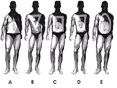 The Curvy & The Curveless: Male & Female Body Types: Guidelines ...