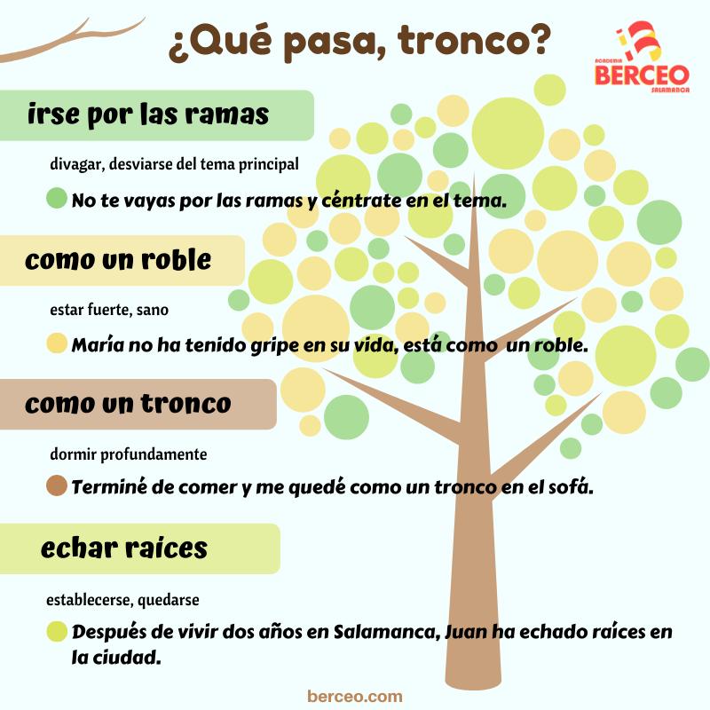 20 Ideas De Expresiones En Español En 2021 Expresiones En Español Expresiones Español