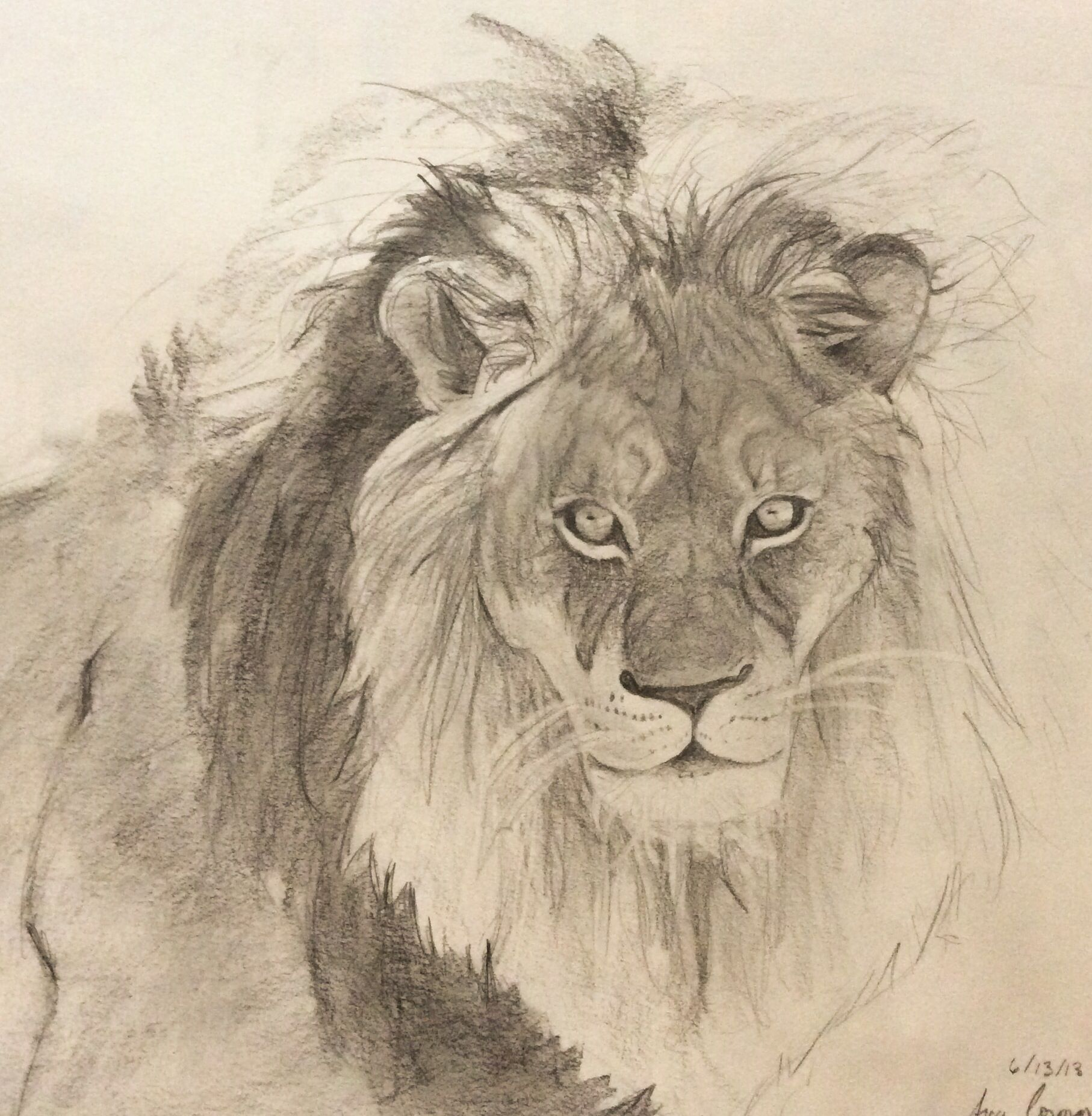My lion drawing for an old friend