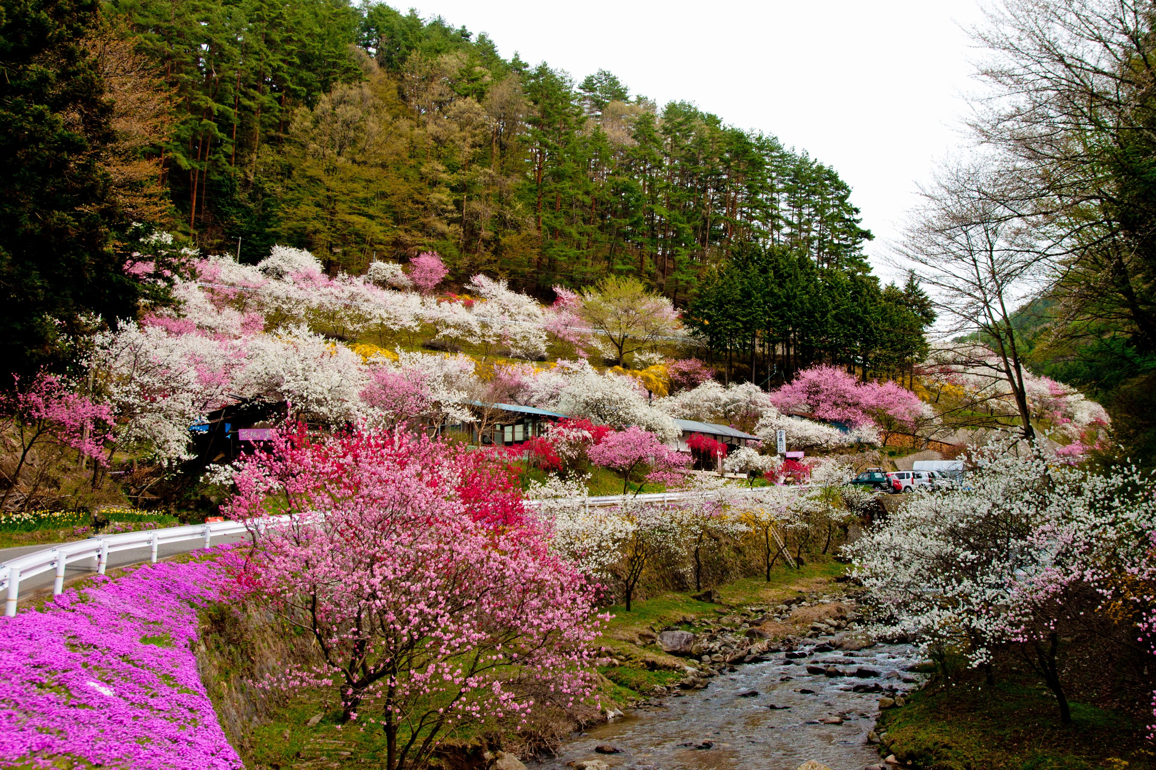 Japan\'s countryside. | Places I NEED to go to before I die ...