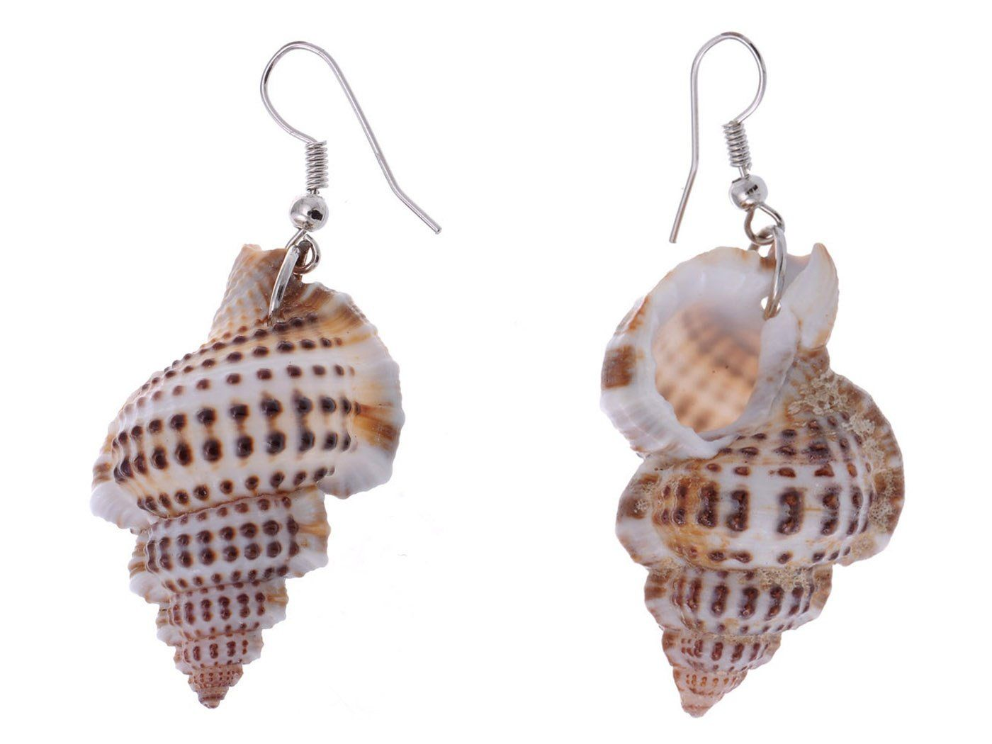 Dangle Earrings With Sea Shells /& Silver Accent