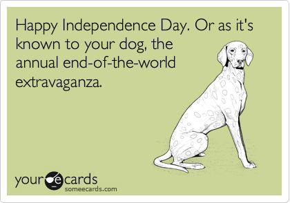 Happy Independence Day Or As It S Known To Your Dog The Annual End Of The World Extravaganza Ecards Funny Humor Haha Funny