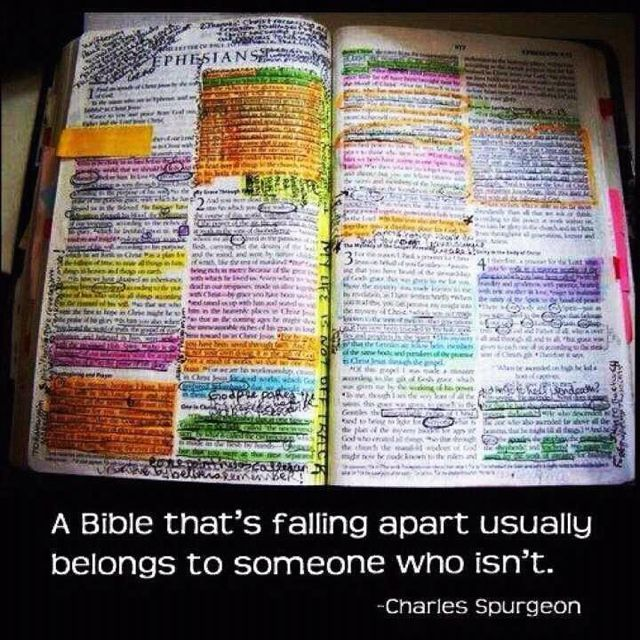 reminds me of my mawmaw's bible!