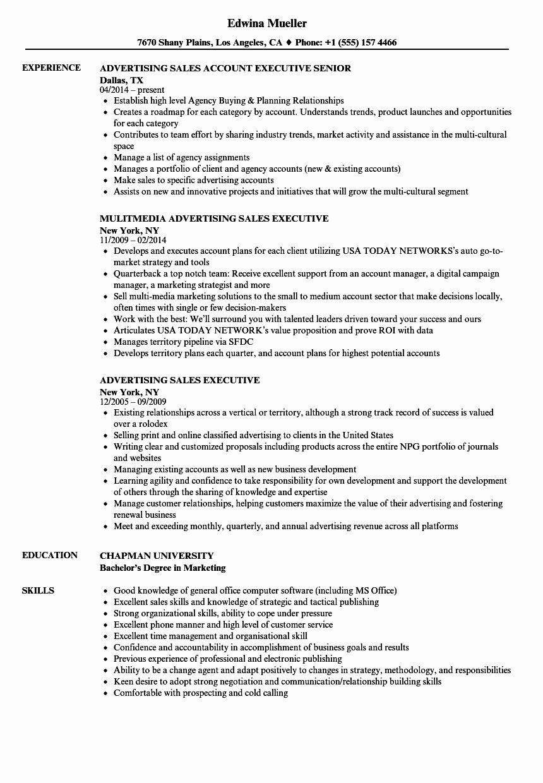 15+ Regional director of sales resume ideas in 2021