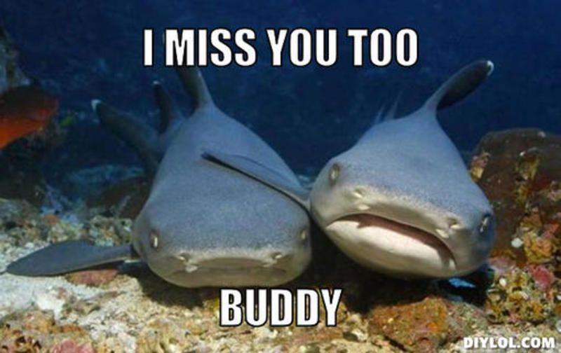 Funny Miss You Friend Meme : Funny instagram accounts to follow today