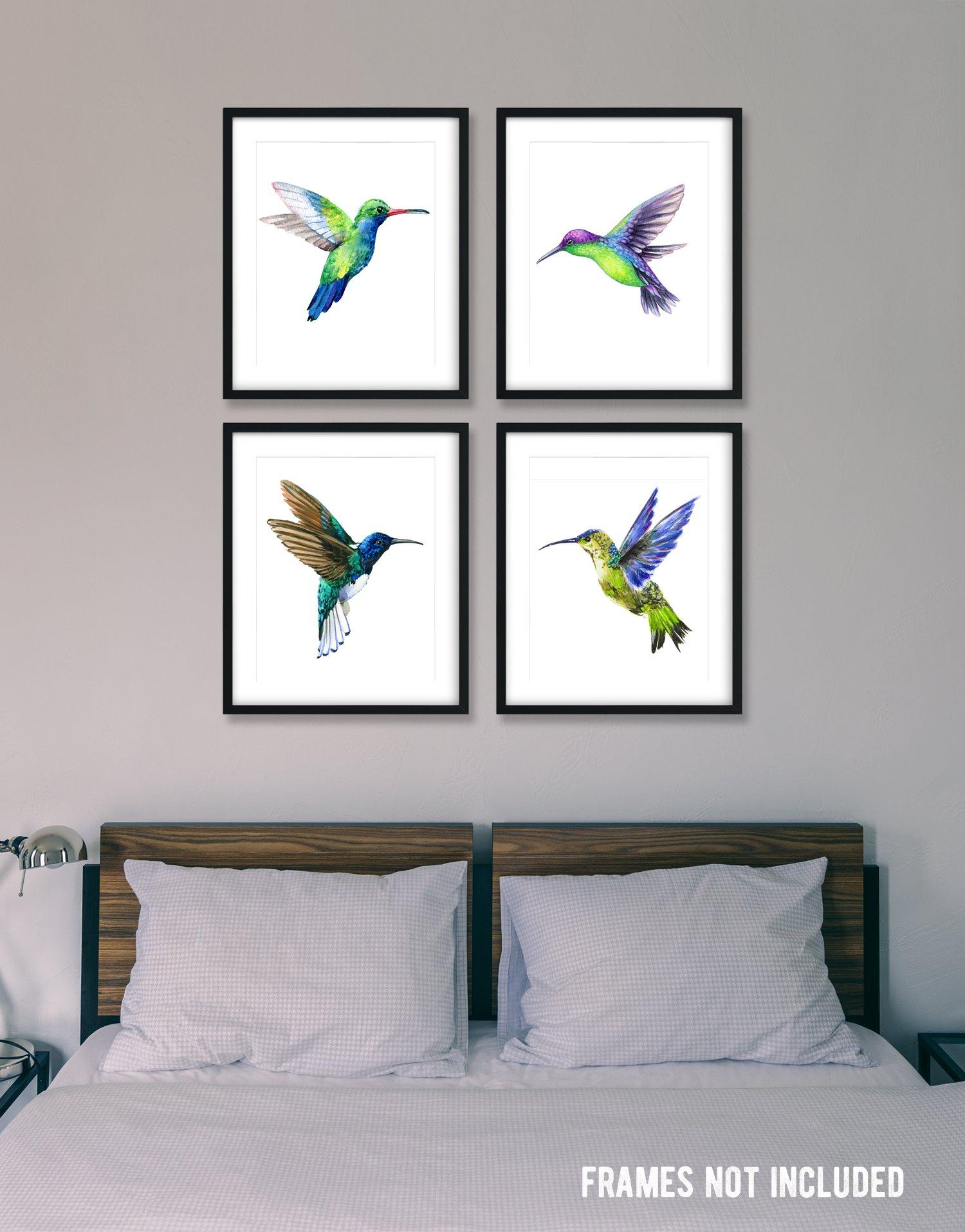 Hummingbird posters set of 4 unframed great wall decor