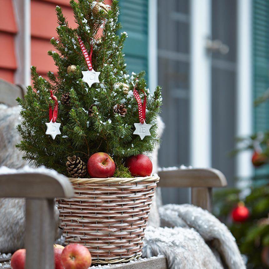 wer hat sich denn da als weihnachtsbaum verkleidet wir. Black Bedroom Furniture Sets. Home Design Ideas
