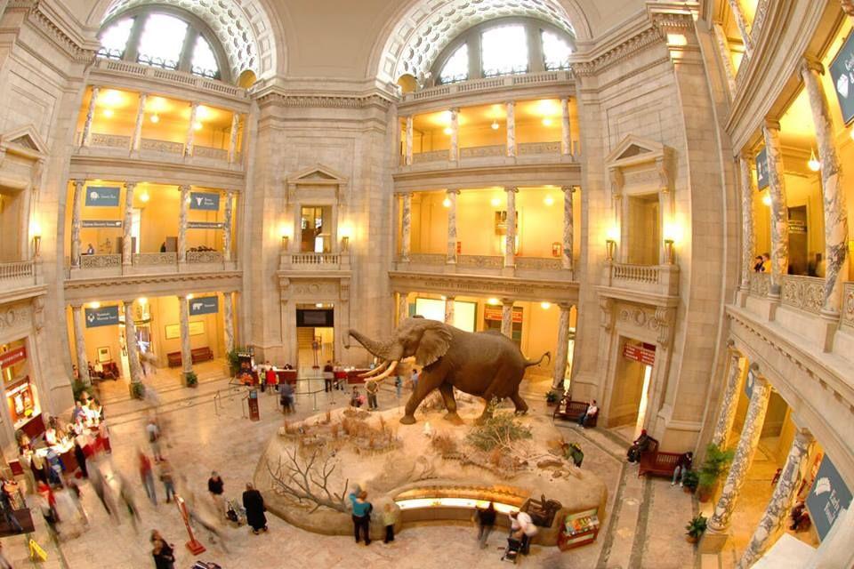 Smithsonian Museum in Washington DC