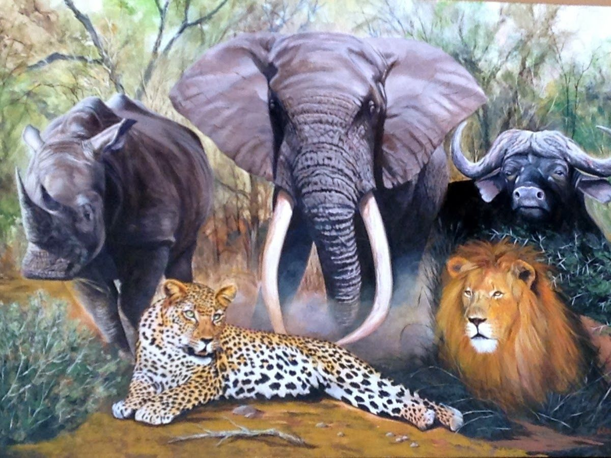 Big 5 Pilanesberg Game Reserve, North West, South Africa