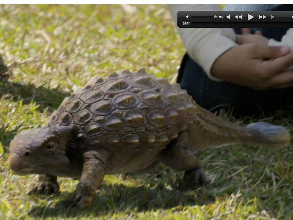Ankylosaurus - Google Search