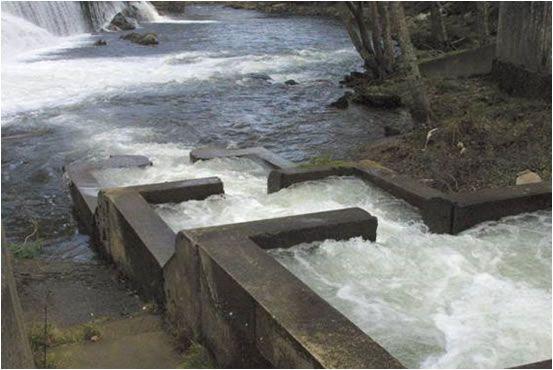 Escala de peces en el remonte de un rio