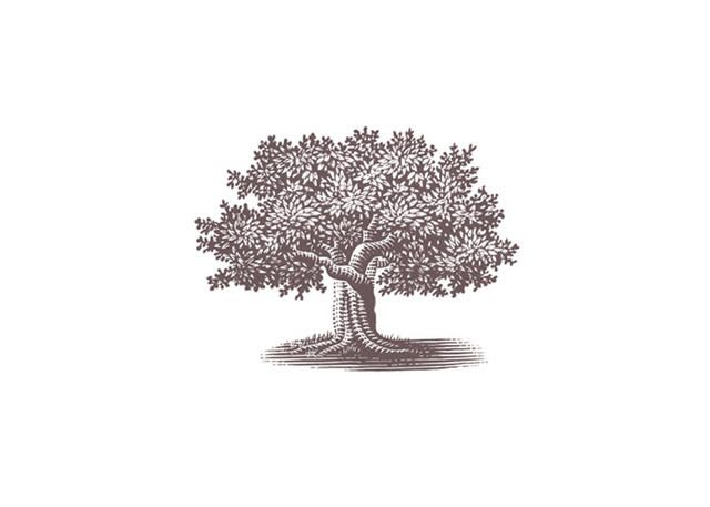 Tree Etching by ancient-relic on DeviantArt