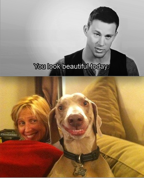 I laugh harder every time I look at it!