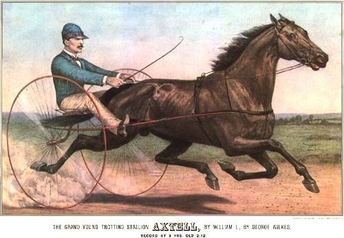 The Grand Young Trotting Stallion AXTELL - sold in 1889 for $105,000, record for any horse at that time. Owned and raced by C.W. Williams, Independence, Iowa