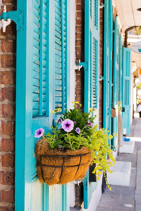 """""""Teal Shutters and Window Box"""" by Kristina Austin Scarcelli"""