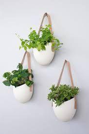 Image Result For Modern Herb Pot Part 49
