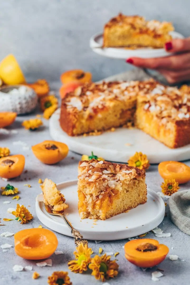 Aprikosenkuchen Mit Kokos Rezept Mit Bildern Rezepte Marillenkuchen Rezeptideen