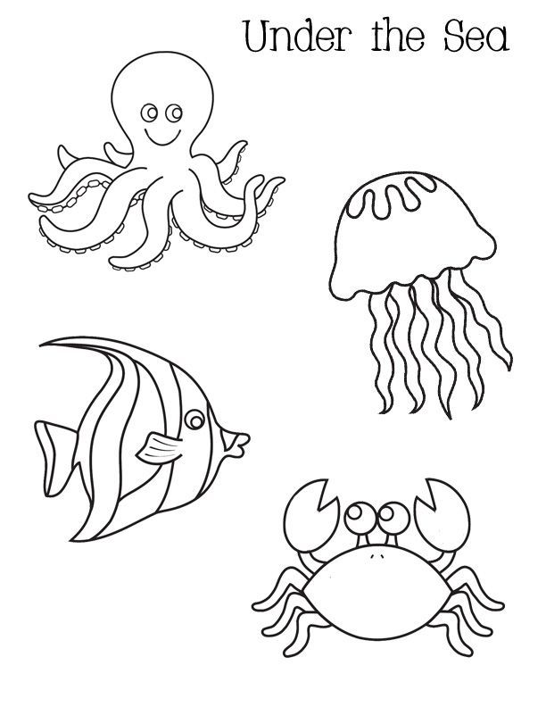 Ocean activities: FREE under the sea coloring pages