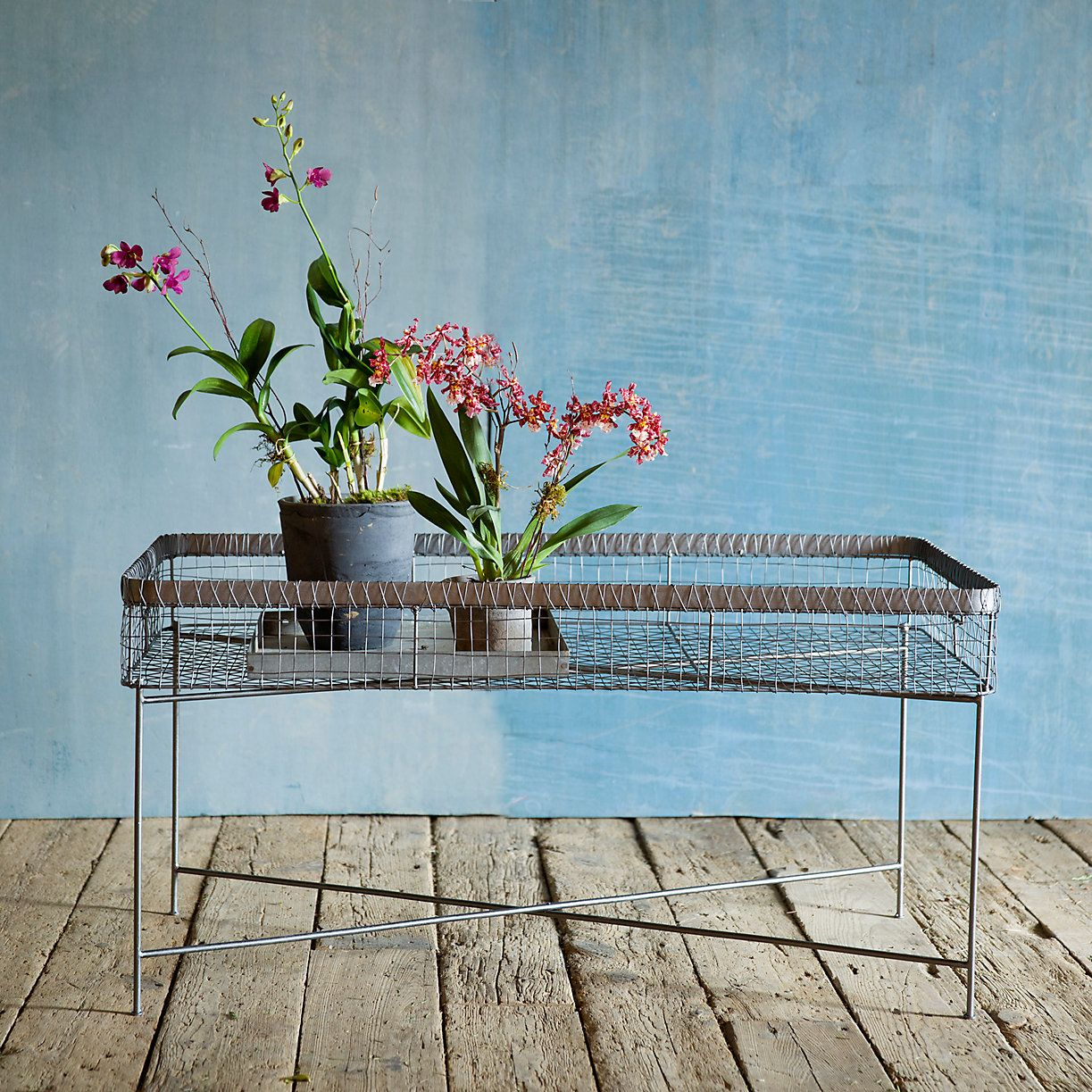 Coffee Table Plant Stand in Outdoor Living FURNITURE + ACCENTS Furniture Shop by Collection Zinc + Wire at Terrain