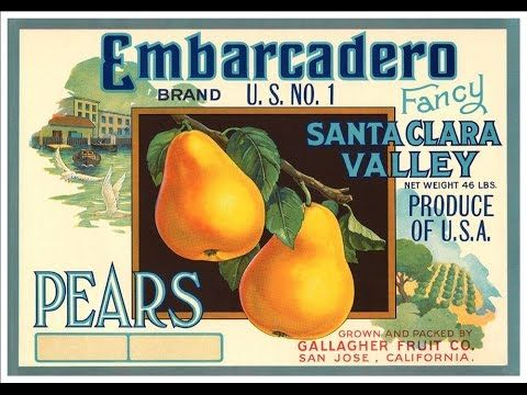 A Wonderful Collection Of Prints Taken From Vintage Produce Crate Labels
