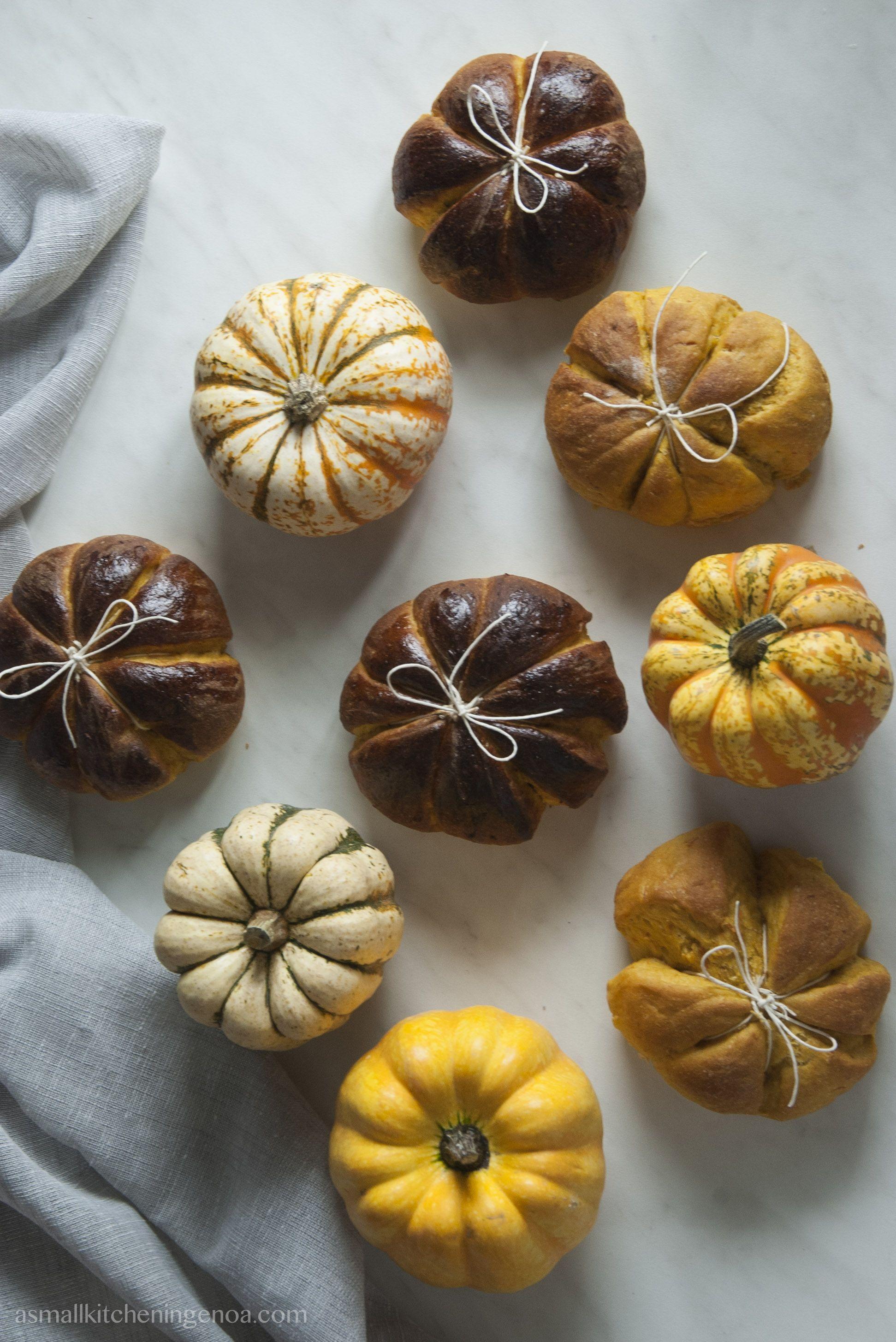 Pumpink buns of Murta.