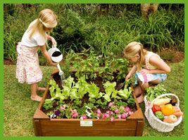 Vegetable Garden Ideas For Kids kids vegetable garden box, plant a simple four season garden