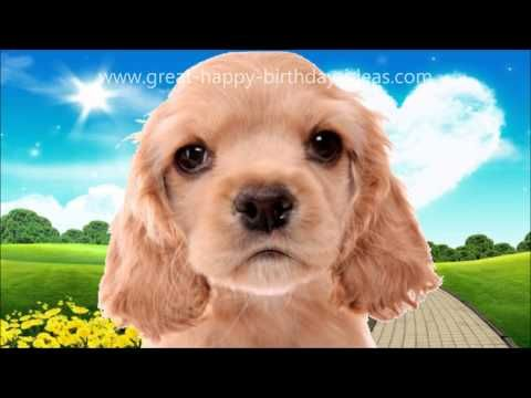 Cute Dog Sings Happy Birthday