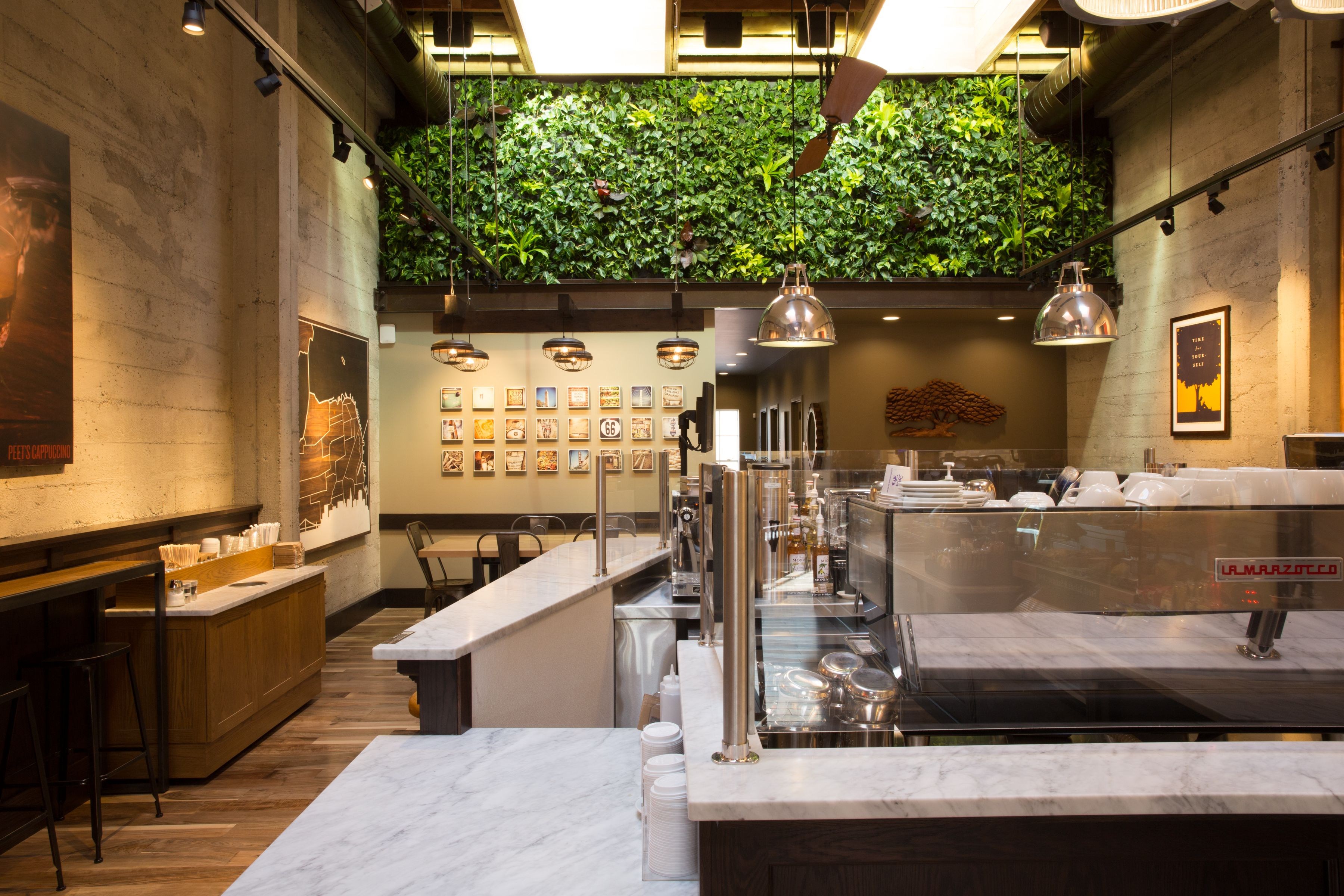 Peet's Coffee Living Wall in San Frabcisco, CA, Vertical