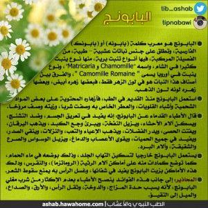 الطب النبوي البديل والتدواي بالاعشاب فوائد البابونج Natural Medicine Health Herbalism
