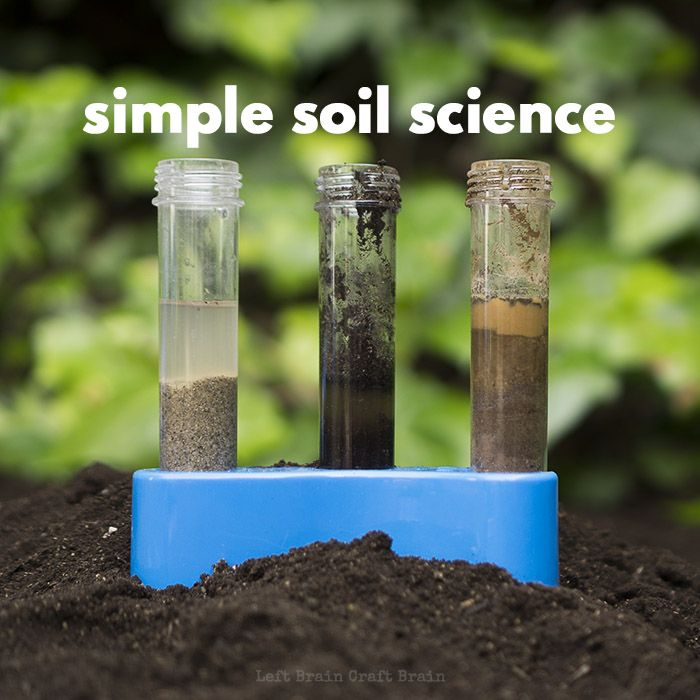 soil scientist