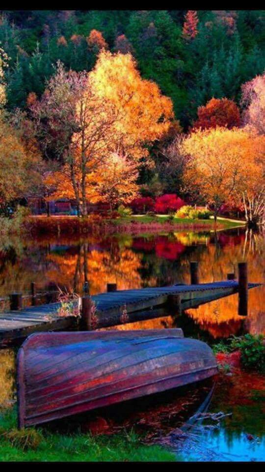 Beautiful #autumnscenery