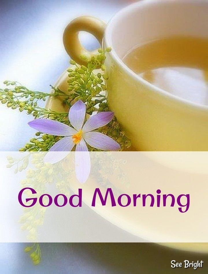 Good Morning Good Morning Coffee Green Tea Vs Coffee Good Morning