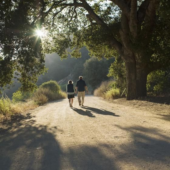 A scenic walk can provide excellent exercise.