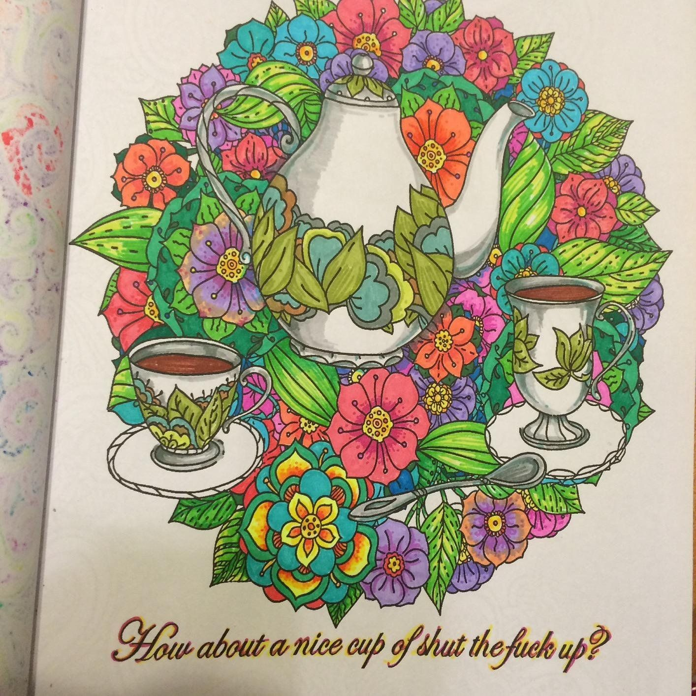 calm the f ck down an irreverent adult coloring book