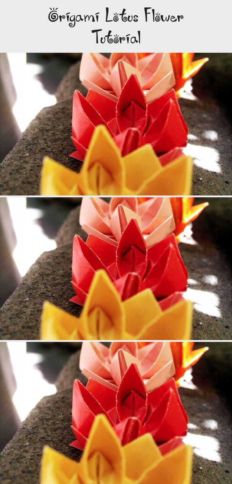 Photo of Origami Lotus Flower Tutorial via Paper Kawaii #origamiModular #origamiHeart #Si…